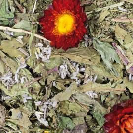 JR Farm Grainless con Salvia y Diente de León