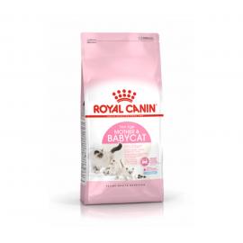 Royal Canin Pienso Feline...