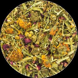 Healthys Flores del Prado