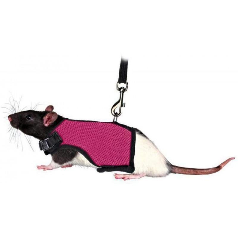 Trixie arnés acolchado ratas