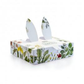 Natür Box Aqua