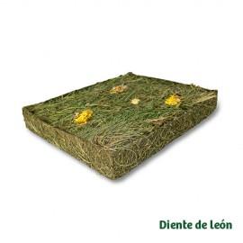 JR Farm Prado de Hierbas con Diente de León