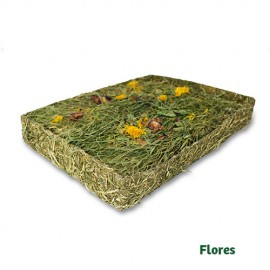JR Farm Prado de Hierbas con Flores