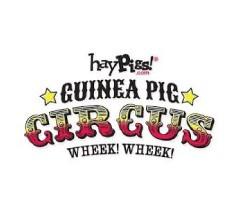 Hay-Pigs-Circus